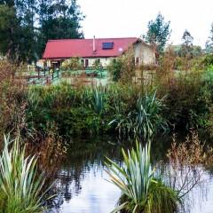 池越しに見る有機生活庵「あいむほーむ」