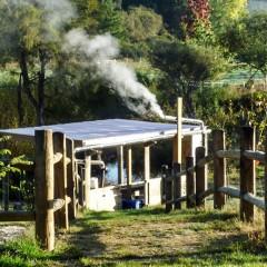 竹炭を焼く